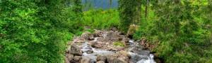 Prenota la tua estate in montagna, con le offerte dell'Hotel Colbricon
